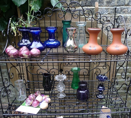 hyacinth vases and bulbs