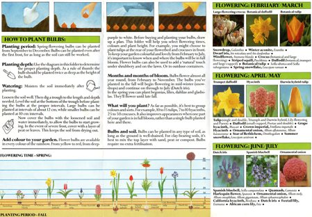Plant Spring Now page 2